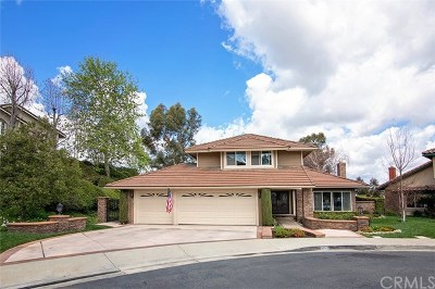 North Tustin Single Family Home For Sale: 9712 Willow Glenn Circle