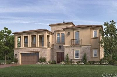 Yorba Linda Single Family Home For Sale: 4102 Duke Drive