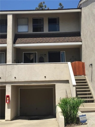 Costa Mesa Condo/Townhouse For Sale: 404 Brighton Springs