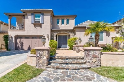 Simi Valley Single Family Home For Sale: 4053 Eagle Flight Drive