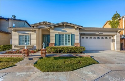 Yorba Linda Single Family Home For Sale: 24100 Rancho Santa Ana Road
