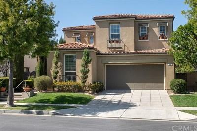 Fullerton Single Family Home For Sale: 2585 Sunflower Street