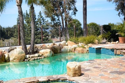 Anaheim Hills Single Family Home For Sale: 7079 E Columbus Drive