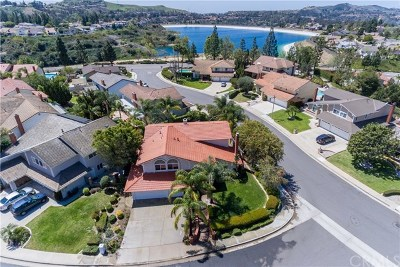 Anaheim Hills Single Family Home For Sale: 911 S Jay Circle