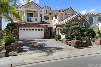 Yorba Linda Single Family Home For Sale: 4035 Humboldt Lane