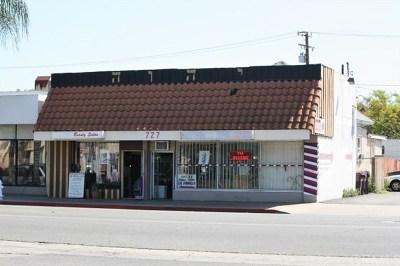 Santa Ana Single Family Home For Sale: 725 S Main Street
