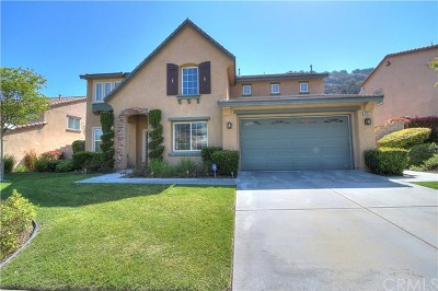 Corona Single Family Home For Sale: 3581 Corbett Street