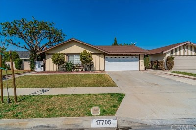 Cerritos Single Family Home For Sale: 17705 Antonio Avenue