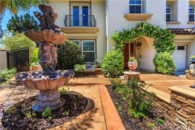 Yorba Linda Single Family Home For Sale: 19935 Via Monita