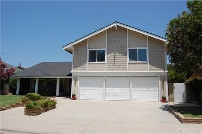 Placentia Single Family Home For Sale: 519 Comanche Drive