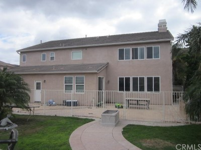 Norco Single Family Home For Sale: 3180 Crestview Drive