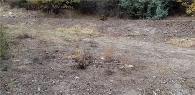 San Bernardino County Residential Lots & Land For Sale: 880 Palm Lane