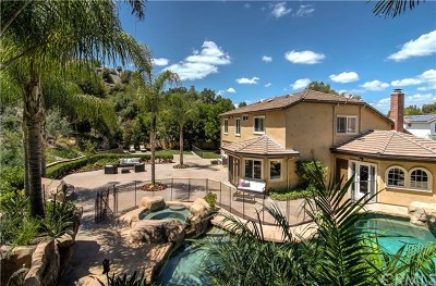 Laguna Hills Single Family Home For Sale: 25902 Rich Springs Circle