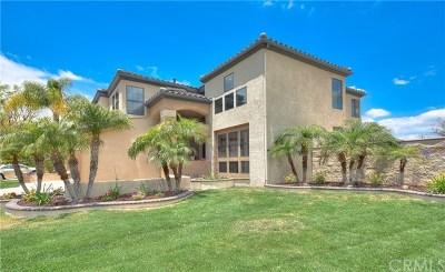 Corona Single Family Home For Sale: 2715 Hidden Hills Way