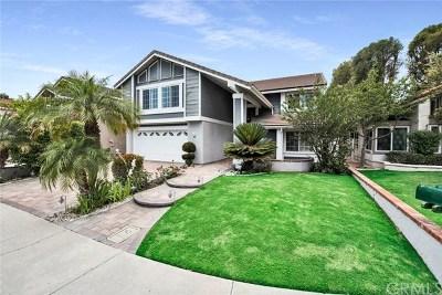 Irvine Single Family Home For Sale: 23 Christamon E