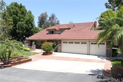 Anaheim Hills CA Single Family Home For Sale: $1,195,000