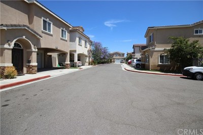 Garden Grove Single Family Home For Sale: 10703 Lauren Circle