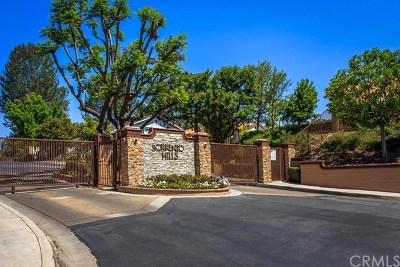 Fullerton Single Family Home For Sale: 1820 Lexington Drive