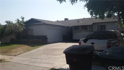 Anaheim Single Family Home For Sale: 1205 N Ralston Street