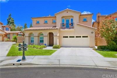 La Habra Single Family Home For Sale: 490 Iris Street