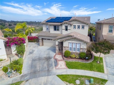 Fullerton Single Family Home For Sale: 3076 Eagle Pointe Drive