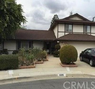 Diamond Bar Single Family Home For Sale: 405 Camaritas Drive