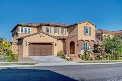 Brea Single Family Home For Sale: 536 N Belridge