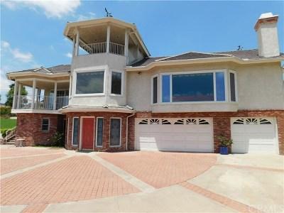 Yorba Linda Single Family Home For Sale: 5231 Tedford Way