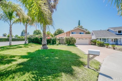 Orange County Single Family Home For Sale: 25051 Costeau Street