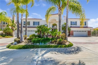 Chino Hills Single Family Home For Sale: 2587 Viewridge Drive