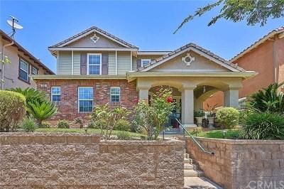 Fullerton Single Family Home For Sale: 2033 Hetebrink Street
