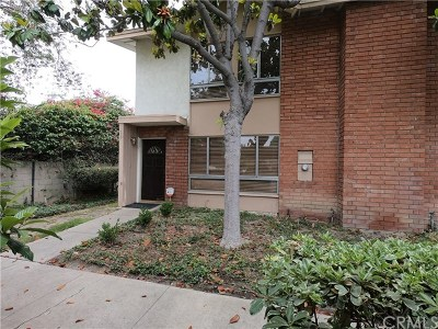 Tustin Single Family Home For Sale: 16555 Montego Way