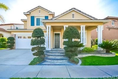 Fullerton Single Family Home For Sale: 658 Oak Tree Street