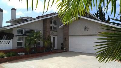 Orange Single Family Home For Sale: 235 N Buckskin Way