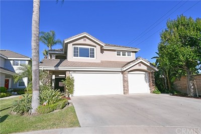 Placentia Single Family Home For Sale: 600 Muro Circle