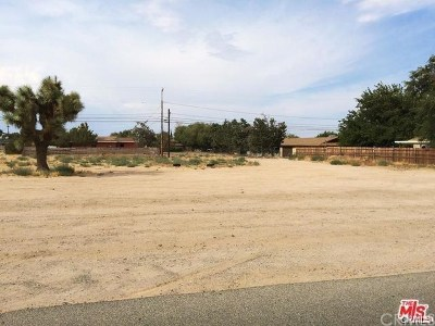 Hesperia Residential Lots & Land For Sale: 16230 Yucca Street