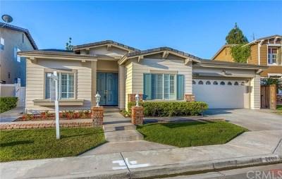 Yorba Linda Single Family Home For Sale: 24100 Rancho Santa Ana Road