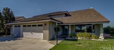 Single Family Home Active Under Contract: 419 S Split Rail Lane