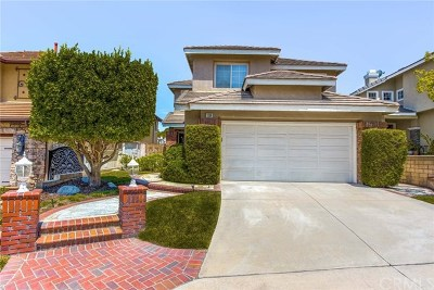 Anaheim Hills Single Family Home For Sale: 1228 S Silver Star Way