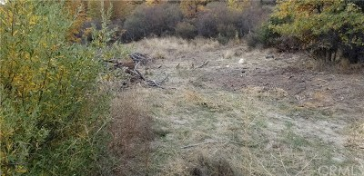 Lake Arrowhead CA Residential Lots & Land For Sale: $20,000