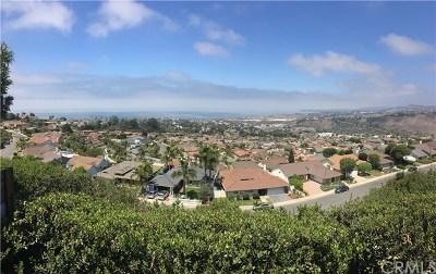 San Clemente Single Family Home For Sale: 725 Avenida Presidio