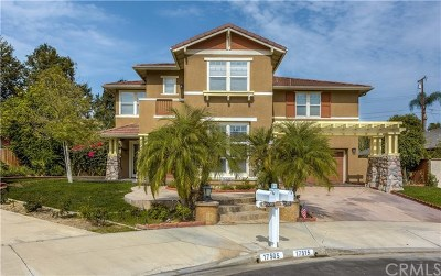 Yorba Linda Single Family Home For Sale: 17515 Page Court