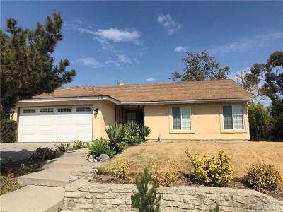 Walnut Single Family Home For Sale: 356 Vista Del Norte