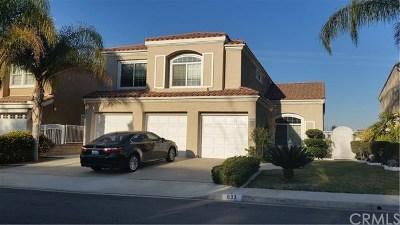 Anaheim Hills Rental For Rent: 633 S Morningstar Drive