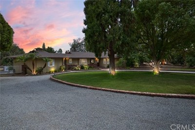 Yorba Linda Single Family Home For Sale: 19444 Via Del Caballo