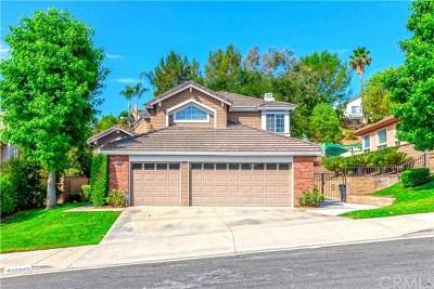 Chino Hills Single Family Home For Sale: 15048 Calle La Paloma