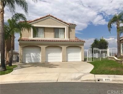 Anaheim Hills Rental For Rent: 695 S Morningstar Drive
