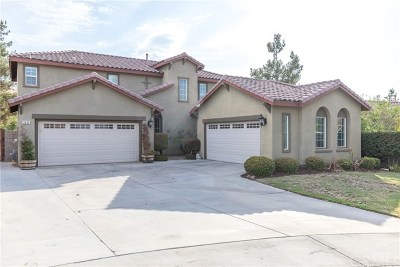 Perris Single Family Home For Sale: 3830 Peridot Court