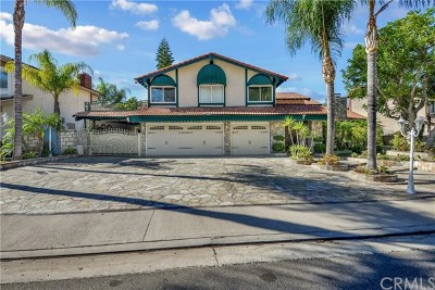Anaheim Hills Single Family Home For Sale: 273 S Solomon Drive