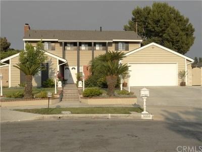 Fullerton Single Family Home For Sale: 2008 Verdugo Place